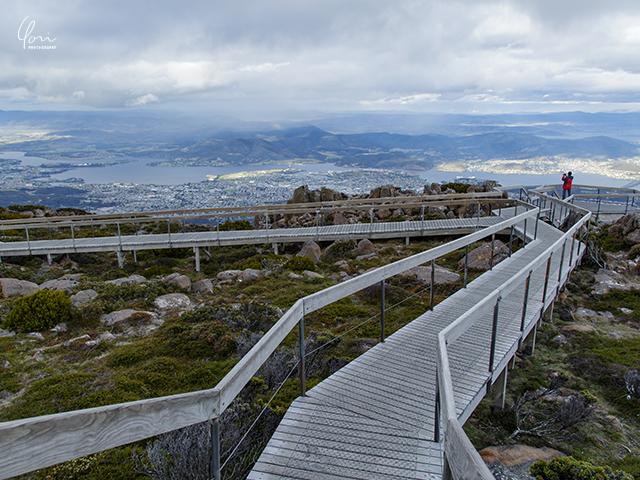 ウェリントン山頂 木製の歩道 Mt. Wellington wooden footpath