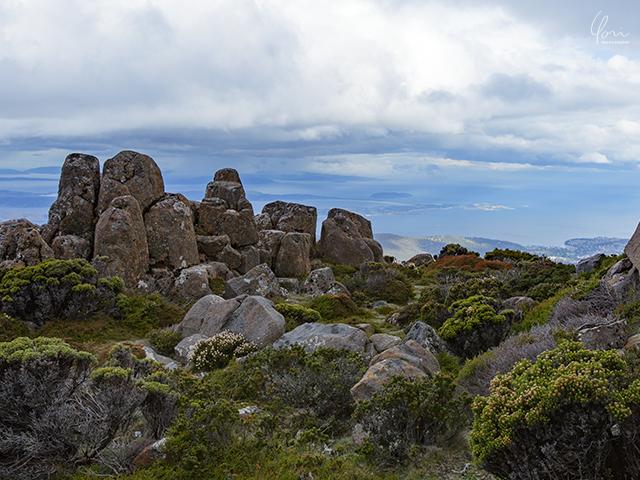 ウェリントン山 山頂 Mt. Wellington summit