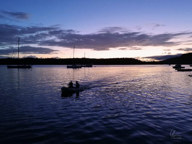 サンセットハーバー トンガ ババウ島