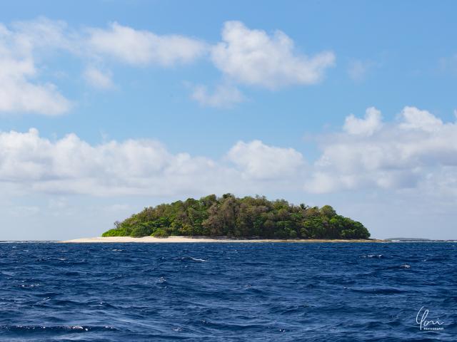 トンガ ババウ島 小島