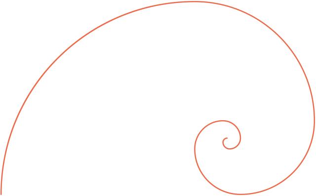 フィボナッチ螺旋 写真 構図 基本 テクニック 上達