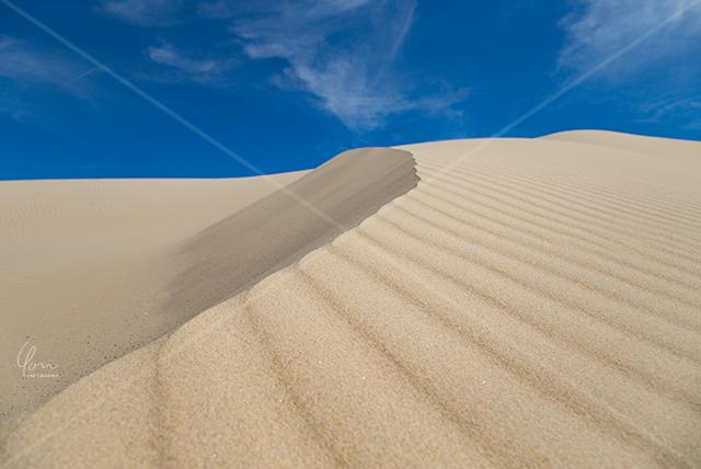 対角線 砂丘 Stockton sand dune