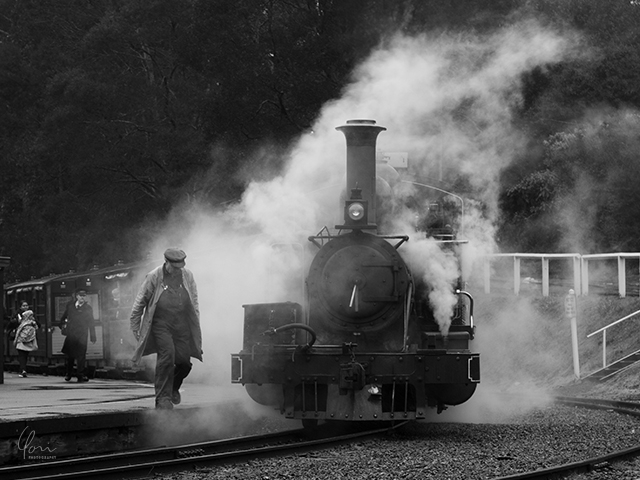 蒸気機関車 steam train