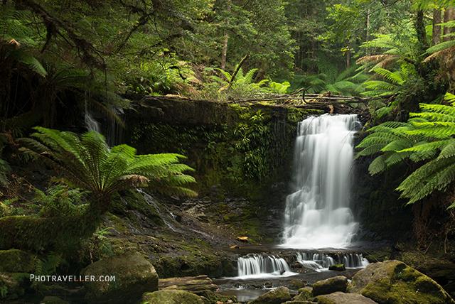 タスマニア マウントフィールド国立公園 ホースシュー滝