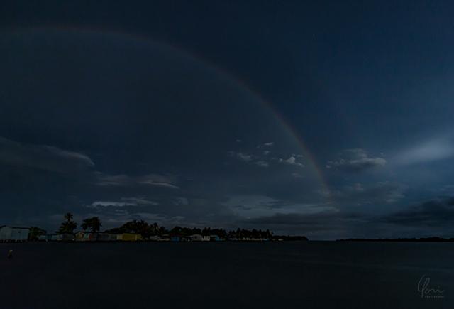 ナイトレインボー Night rainbow