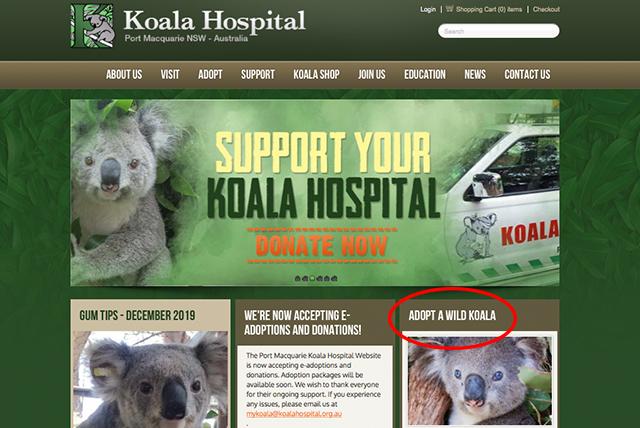 ポートマッコーリ コアラ病院トップページ