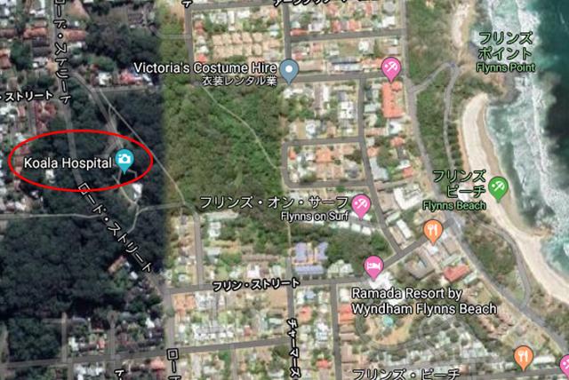 ポートマッコーリー コアラ病院地図