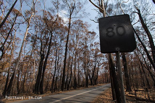 ブルーマウンテン山火事 焼けただれた標識