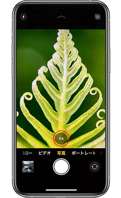 iPhone11 超広角 切り替え方