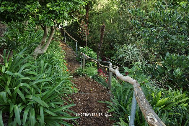 Wendy's secret garden Lavender bay Sydney