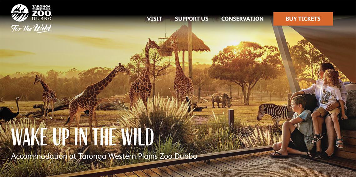 Zoofari website